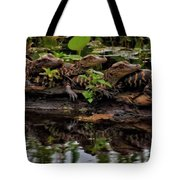 Baby Alligators Reflection Tote Bag