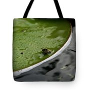 Baby Amphibian Tote Bag