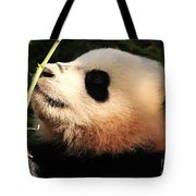 Baby Bear Bamboo Inspection Tote Bag