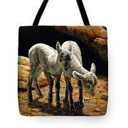 Baby Bighorns Tote Bag