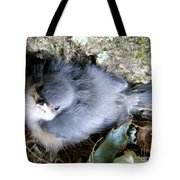 Baby Bird Learns A Lesson Tote Bag