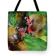 Baby Bird Nest In Hong Kong Bird Market Tote Bag