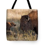 Baby Bison Meets Daddy Tote Bag