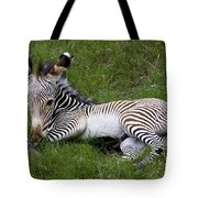 Baby Black And White Beauty Tote Bag