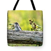Baby Bluebird Tote Bag
