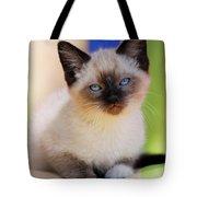 Baby Blues Tote Bag