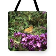 Baby Butterfly Tote Bag