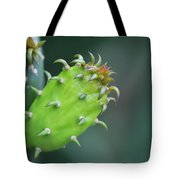 Baby Cactus - Macro Photography By Sharon Cummings Tote Bag