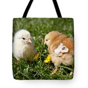 Baby Chicks Tote Bag