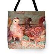 Baby Chicks Under Heat Lamp Art Prints Tote Bag