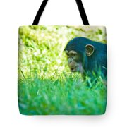 Baby Chimp In The Grass Tote Bag