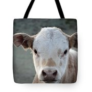 Baby Cow In Colorado Tote Bag