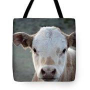Baby Cow In Colorado Tote Bag