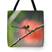 Baby Dragonfly Tote Bag