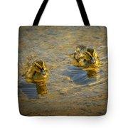 Baby Ducks Tote Bag