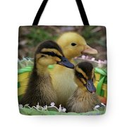 Baby Ducks Tote Bag