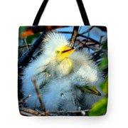 Baby Egrets Tote Bag