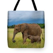 Baby Elaphant Tote Bag