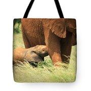 Baby Elephant Feeding Tote Bag