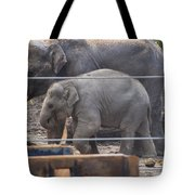 Baby Elephant Lily Tote Bag