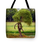 Baby Ent Tote Bag