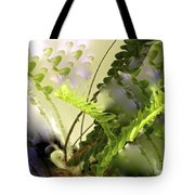 Baby Ferns Unfurling For Jim Tote Bag