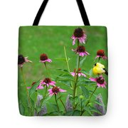 Baby Finch Tote Bag