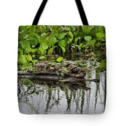 Baby Gators Tote Bag