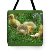 Baby Geese-mayer Lake-savannah Tote Bag