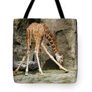 Baby Giraffe 1 Tote Bag