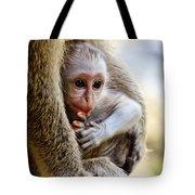 Baby Green Monkey - Barbados Tote Bag