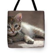 Baby Gretchen Tote Bag