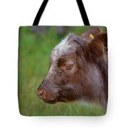 Baby Highland Cow Tote Bag