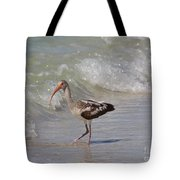 Baby Ibis Tote Bag
