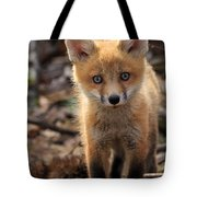 Baby In The Wild Tote Bag