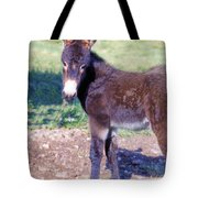 Baby Jenny Tote Bag