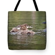 Baby Loons And Mom Tote Bag