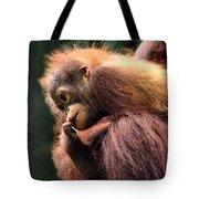 Baby Orangutan Borneo Tote Bag