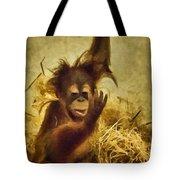 Baby Orangutan At The Denver Zoo Tote Bag