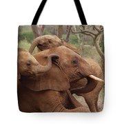 Baby Orphans Explore Imenti Tsavo Kenya Tote Bag