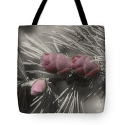 Baby Pine Cones In Partial Color Tote Bag