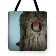 Baby Red Bellied Woodpecker Tote Bag