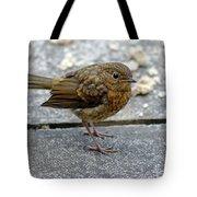Baby Robin Feeding Tote Bag