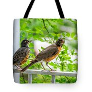 Baby Robin - Ready...just Do What I Do Tote Bag