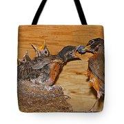Baby Robins Feeding  An5141-14 Tote Bag