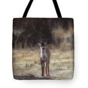 Baby Soft Tote Bag