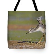 Baby Stilt Stretching Its Wings Tote Bag