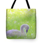 Baby Swans Enjoy A Summer Day Tote Bag