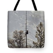 Baby Tree Hugger Tote Bag