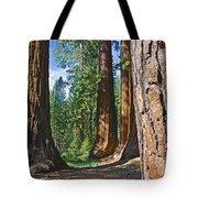 Bachelor And Three Graces In Mariposa Grove In Yosemite National Park-california Tote Bag